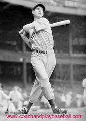 Ted Williams picture swing