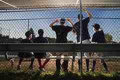 dugout baseball players cheering for home run