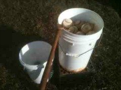 youth baseball coaching baseball buckets for fungo practice